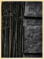 Bamboo and bronze by Dogbytes