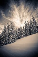 Here comes the cold by tiboat8h