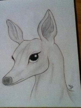 Challenge - draw an animal 1 by janick01