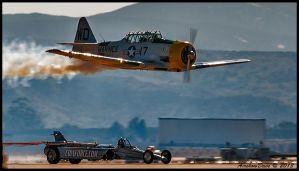 War Dog vs Coinforce by AirshowDave
