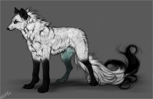 White .spiritwolf. by WhiteSpiritWolf