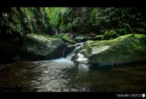 Nichols Creek 6 by shadowfoxcreative