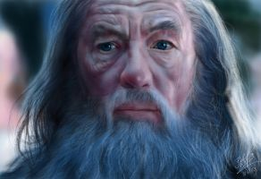iPad painting of Gandalf from LOTR by chaseroflight