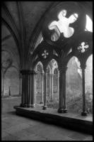 Salisbury Cloisters by thren0dy