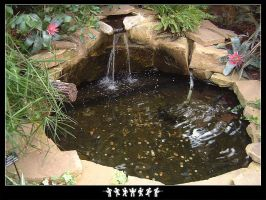 Water Feature by Baz619