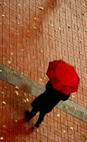 Red umbrella........ by CanDaN