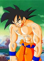 Injured Son Goku Full Color by Haseowolf