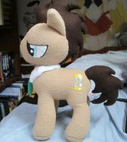 Dr. Whooves by grumble-king2