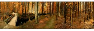 In October 'panorama' by raun