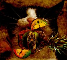 One Cat,One Fruit,One Clock by ai-muse
