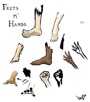 Feets n' Hands by bopx