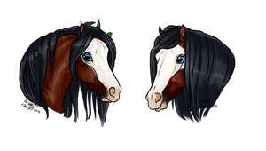 Prize - Jerk headshots by CSStables