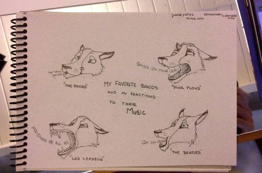Reactions by ArmoredDog