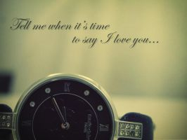 Tell me when it's time to say I love you by rita937