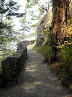 Stock: Trail Path II by Stock-By-Michelle
