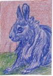 Baby rabbit ACEO by Zarite
