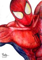 Spiderman by TharukaDul