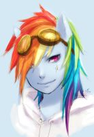 Rainbow Dash again! by ReiTuki