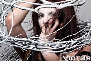 Harsiese by PhotographybyVictor