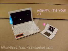 When a NDS meets a Netbook by KeekiTarto7