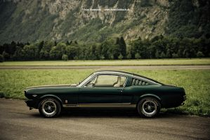 Green Harmony by AmericanMuscle