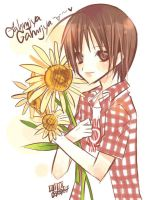 Heechul :Sunflower by mixed-blessing