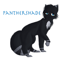 Panthershade (Gift) by son-zu