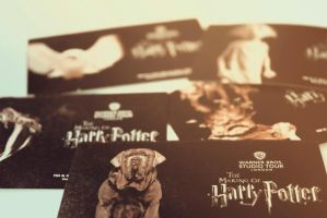 Harry Potter experience by herooftheheadset
