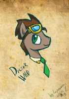 Doctor Whooves by CuprumRus