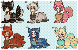 Reduced Price- Set Price - Taurs [Closed] by Asuhinee-Adopt