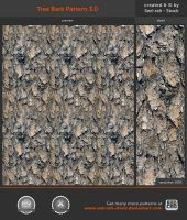 Tree Bark Pattern 3.0 by Sed-rah-Stock