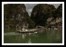 Ha Long Bay - Vietnam - Series: No 20 by SnapperRod