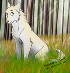 White Wolf by tiger2289