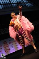 Doflamingo Cosplay Parade by WiredintoSpace