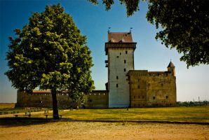 Narva Castle by AnkhaiStenn