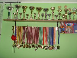 BMX trophies and medals by skyres2
