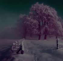 winterland stock image 2 by siska02