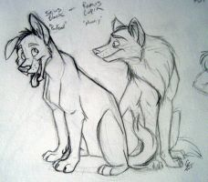 Padfoot and Moony sketch by spiritwolf77