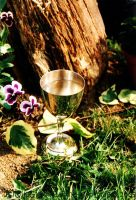 Chalice by EarthHart