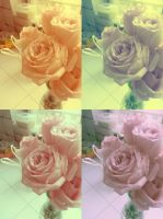 4 Roses by Laura-in-china