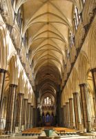 Salisbury Cathedral by Amazonofexeter