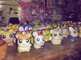It's Hamtaro Time... by KatiePegasus