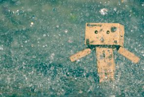 Danbo in the Rain by Sergezen