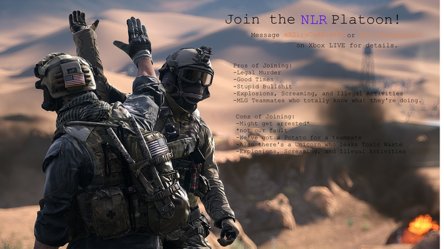 NLR Platoon Banner by Nyx-the-Pyromancer
