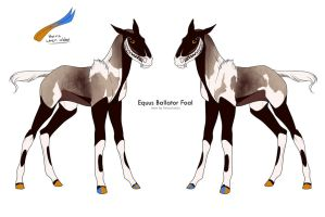 | B-455 Desert Eb foal Design Holder| by Equinera