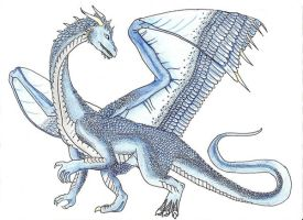 Saphira by Lucy42