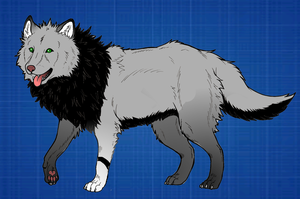 Wolf adoptable - Closed by Dominoluv
