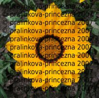 Stock9 - Yellow flower by pralinkova-princezna