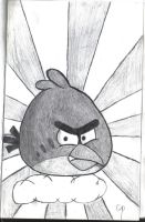 Angry birds by Theory-Of-Existence
