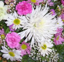Arranged Flowers-Stock by Swordexpert-Stock
